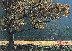 「晩秋の館」 北村昭雄さん (福井市)